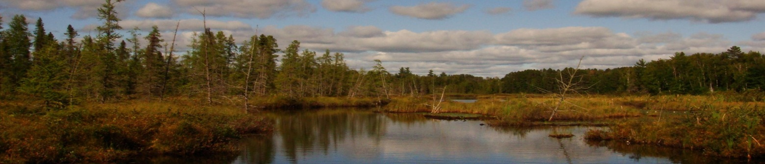 Little Tamarack Flowage Baker Spring Lake Protection and Rehabilitation District